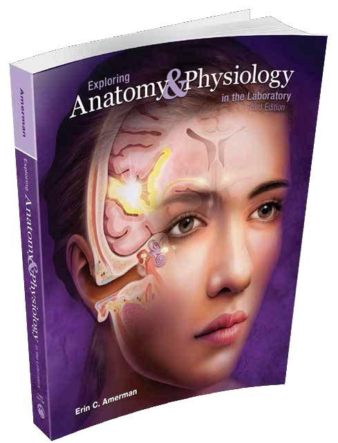 pearson anatomy and physiology lab manual answer key